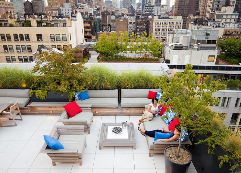 Những lý do để bạn sở hữu một khu vườn trên mái