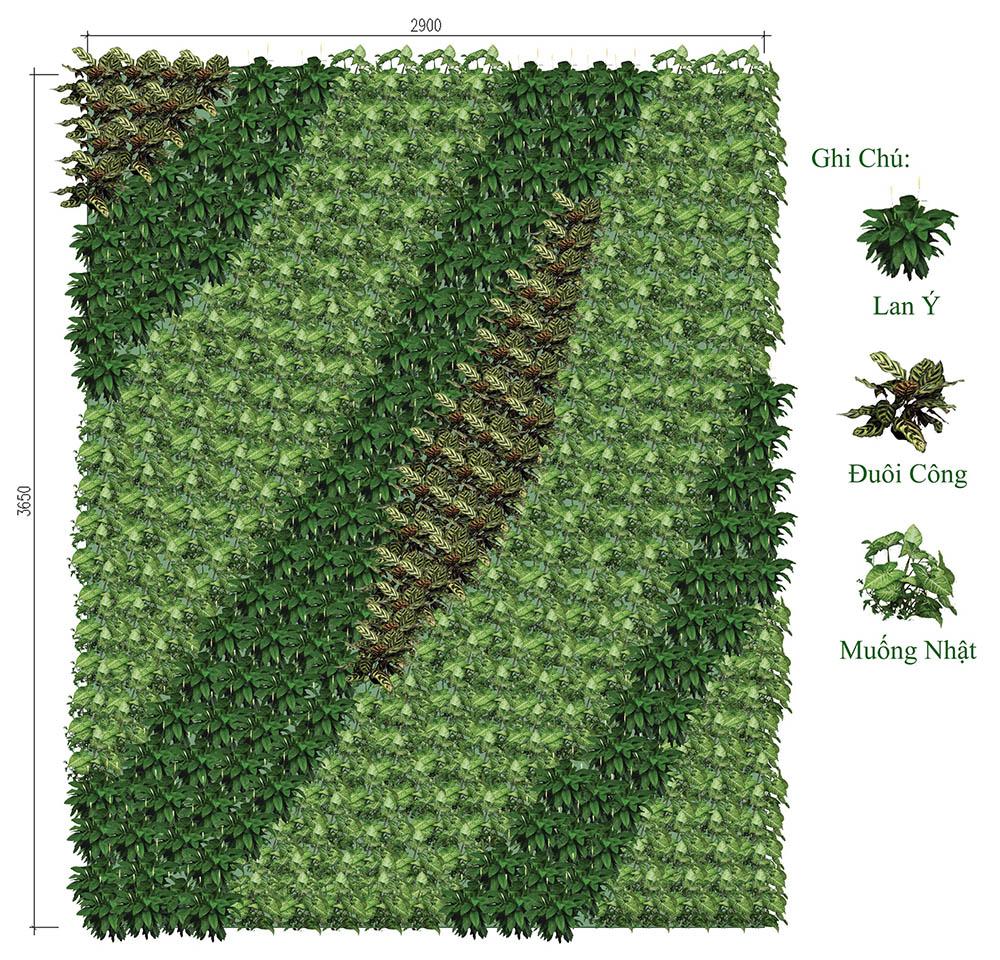Phối cảnh bố trí cây cho tường cây xanh