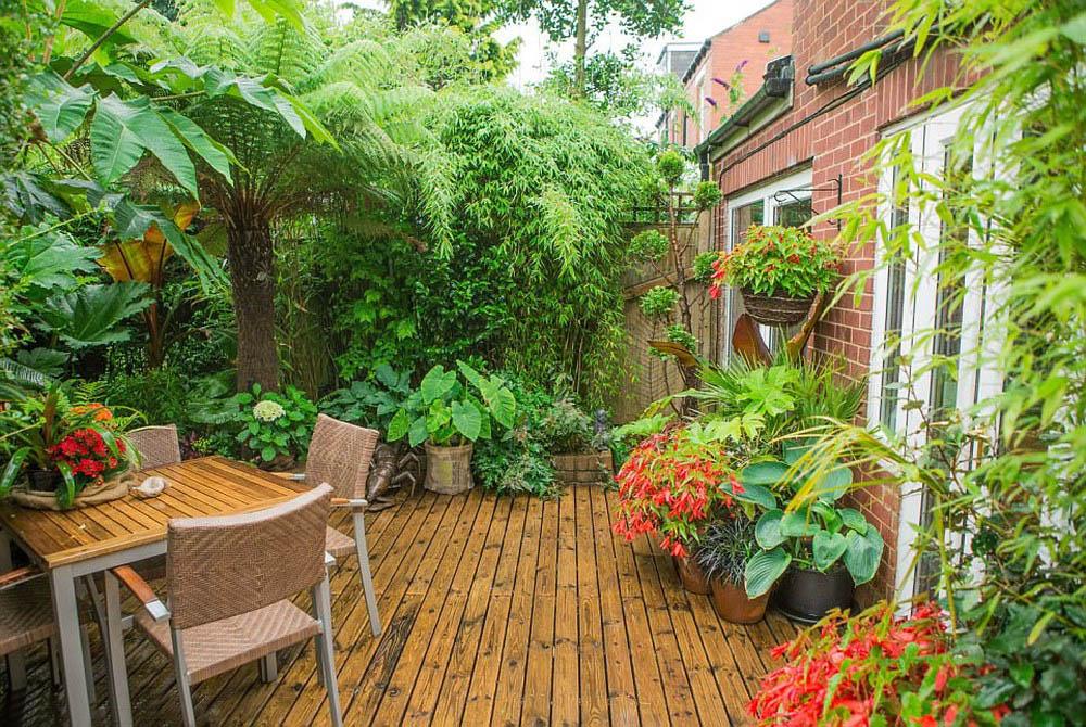Thiết kế thi công sân vườn phong cách vườn nhiệt đới – Mongarden