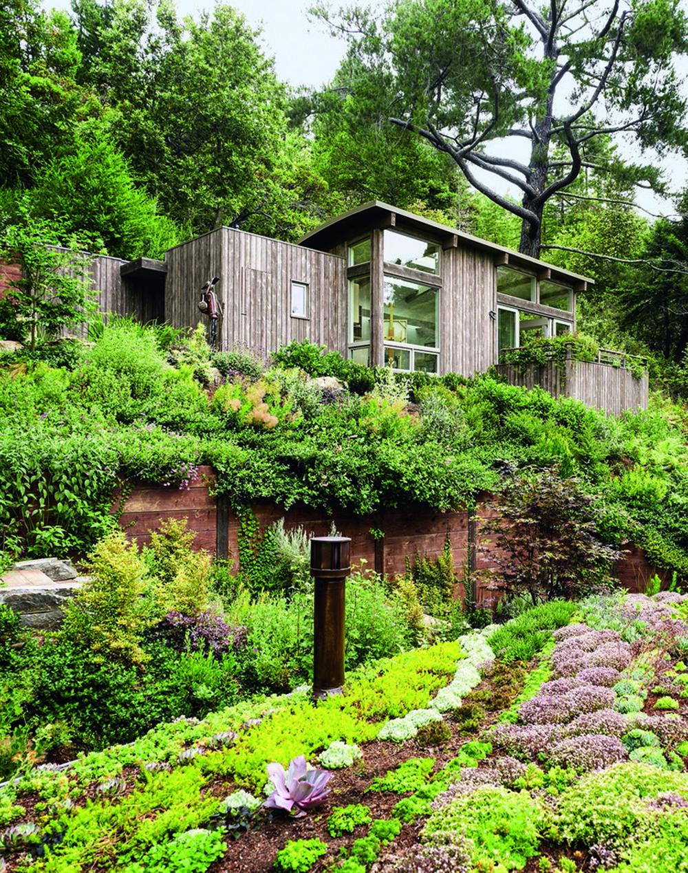 Các cabin của thung lũng Mill, California