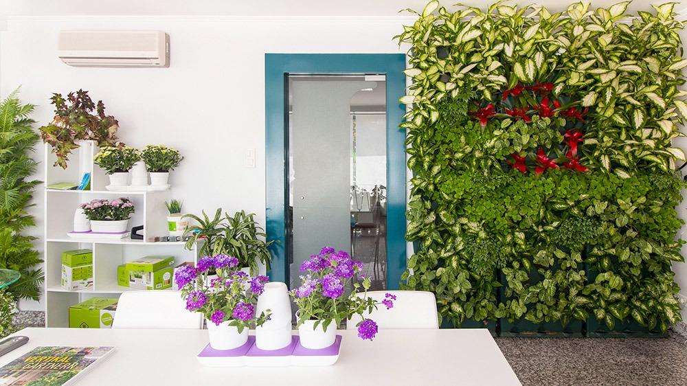 Tường cây xanh cho nội thất văn phòng làm việc - Mongarden