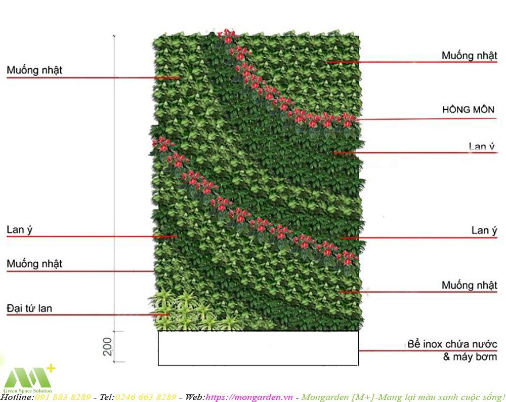 Phương án chỉ định cây cho tường cây xanh