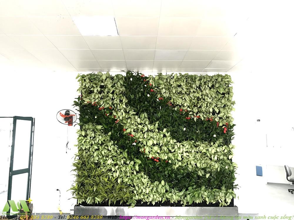 Hoàn thiện tường cây xanh tần 2