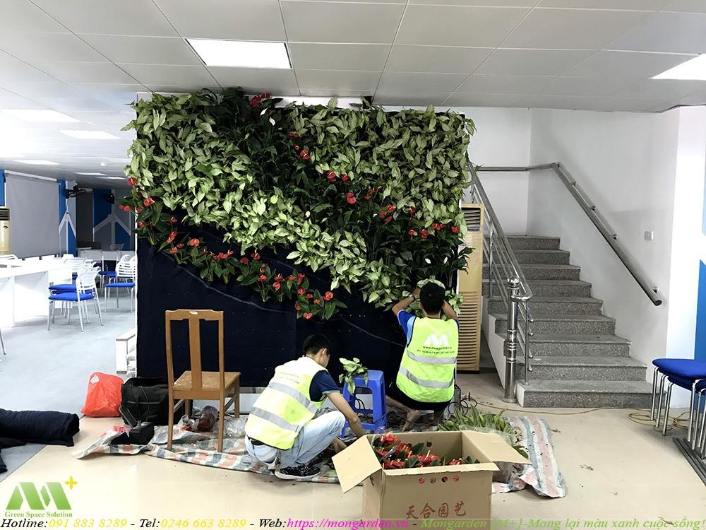 Thi công phần cây xanh cho tường cây xanh tầng 1
