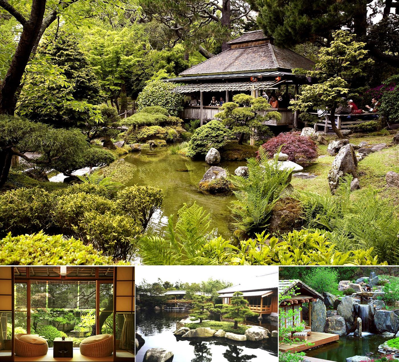 Thể loại vườn trà ( Chaniwa ) trong phong cách vườn Nhật Bản