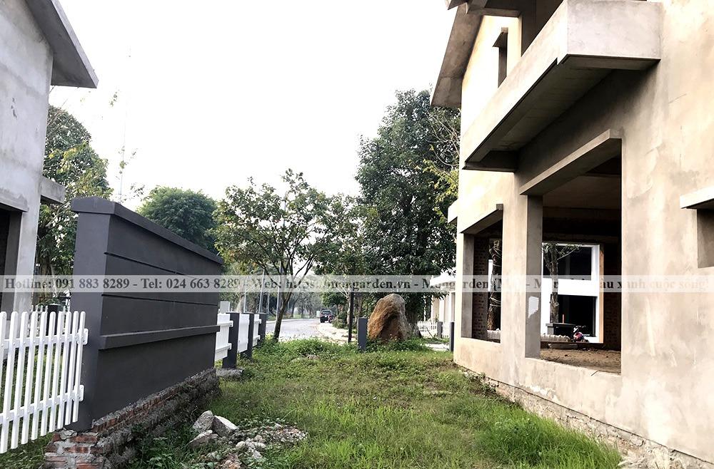 Hiện trạng sân vườn anh Việt Ecopark